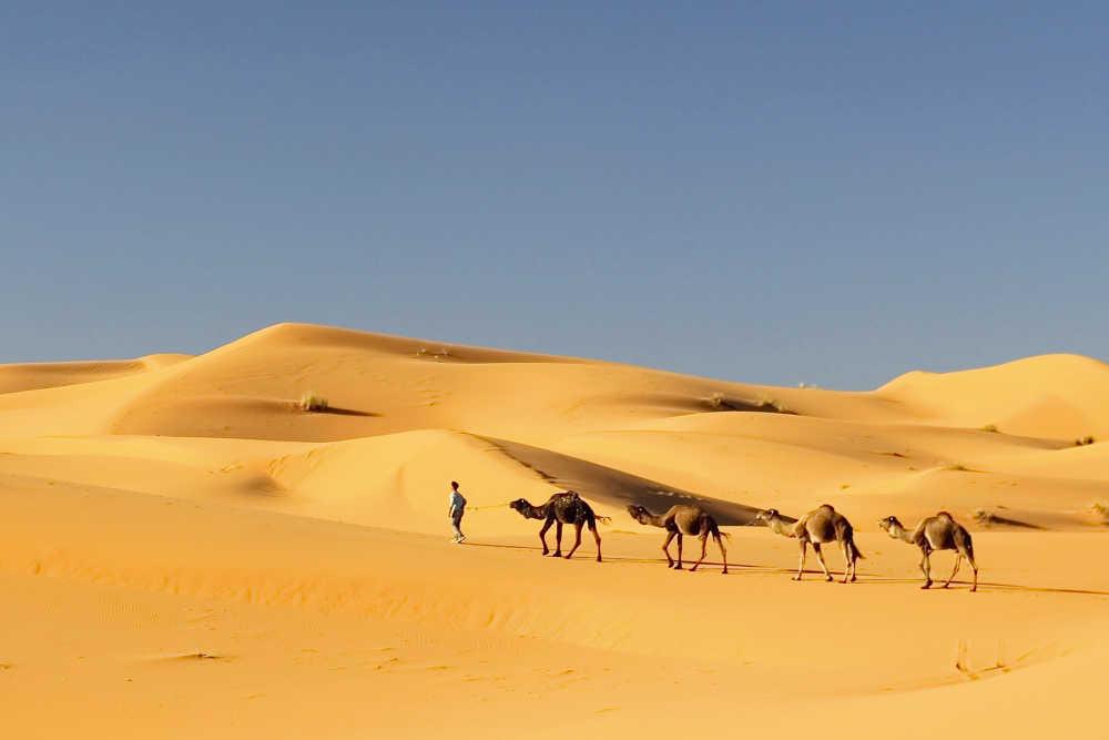 Cheap Flights To Nouakchott Vayama Com