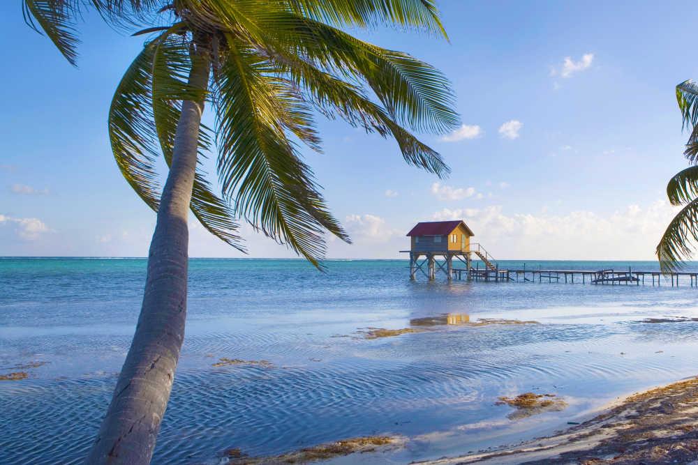 Fl 252 Ge Nach Belize Flugladen De