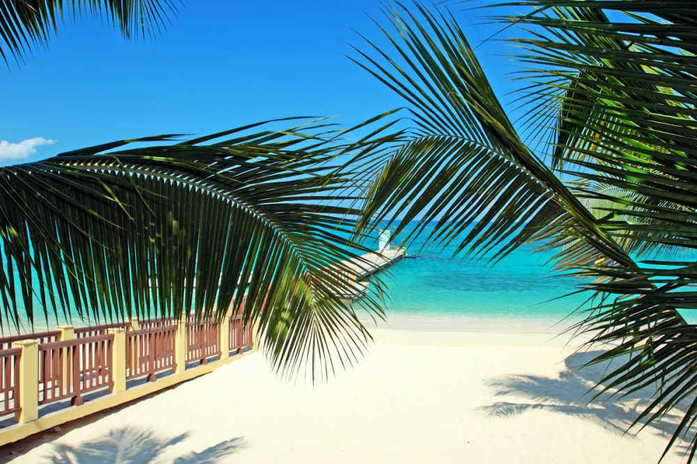 vliegtickets jamaica montego bay