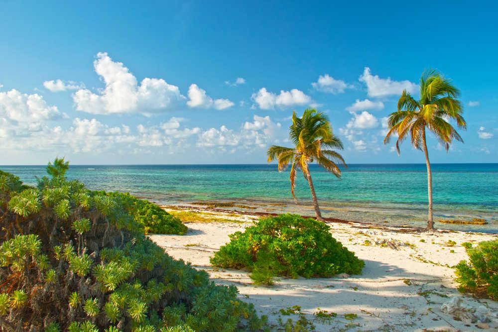 Kaaiman eilanden vliegtijd