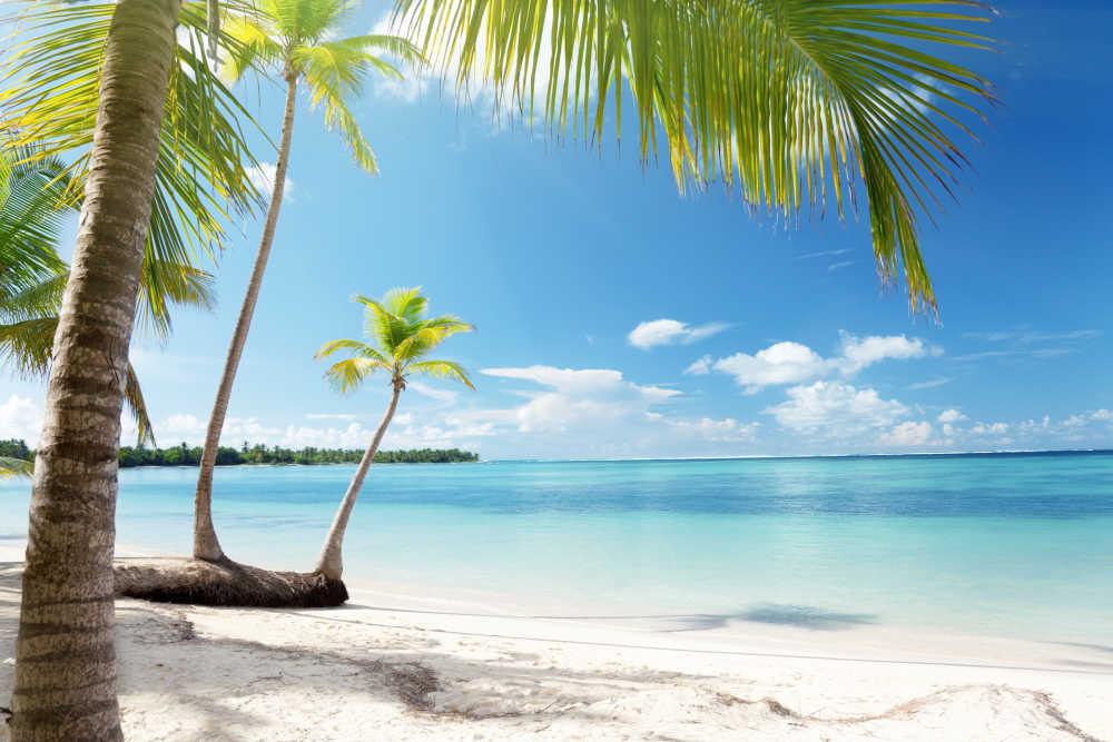 Cheap Flights to Caribbean Islands   CheapTickets co th