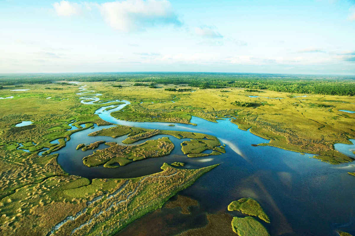 everglades restoration essay Mans impact on the everglades essay the restoration of the everglades is an ongoing effort to remedy damage inflicted on the environment of southern florida.