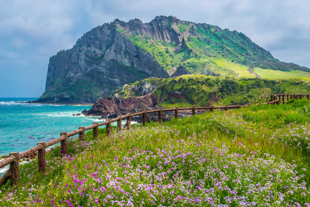 Image result for jeju island